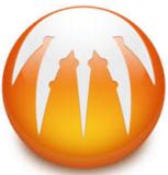 Download BitComet Latest Version