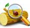 Download Event Log Explorer 4.6 Latest Version