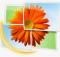 Download Windows Photo Gallery 2019
